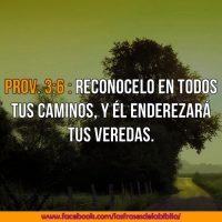 frases biblicas de motivacion para jovenes