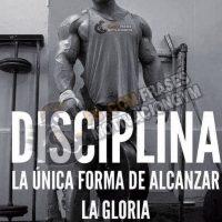 frases de motivacion de gym_354