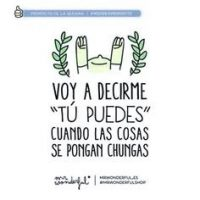 frases de motivacion de mr wonderful 1