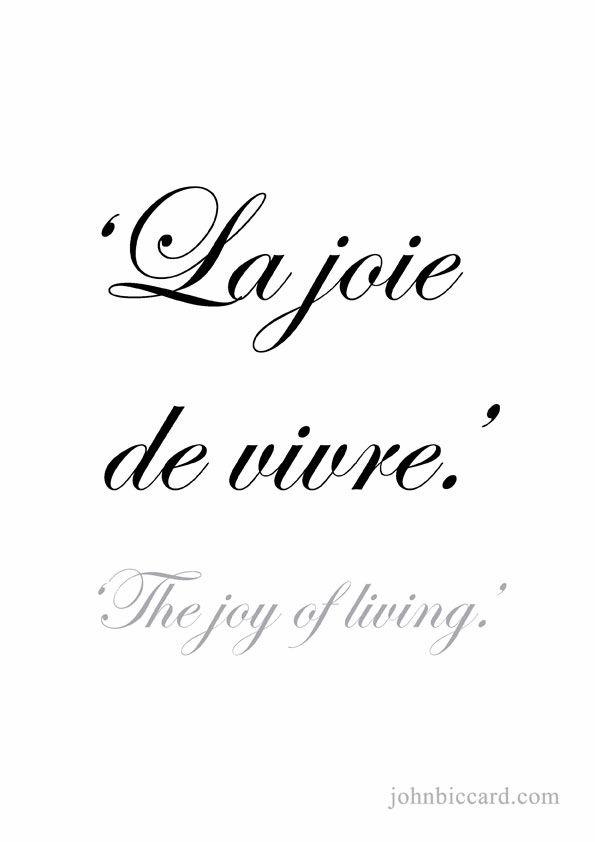 Las 20 Mejores Frases Motivadoras En Frances Solo Imágenes