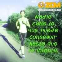 frases de motivacion gym_284
