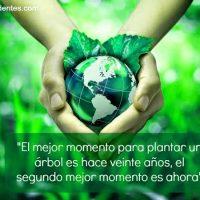 frases de motivacion para cuidar el medio ambiente cortas 2