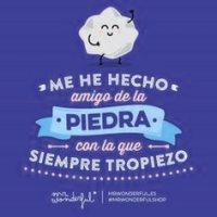frases motivacionales mr wonderful 1