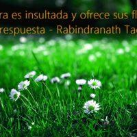 frases motivacionales para cuidar el medio ambiente 2