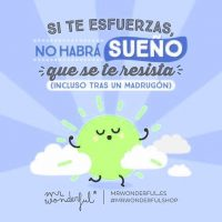 frases motivadoras de mr wonderful 1
