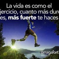 frases motivadoras gym_207
