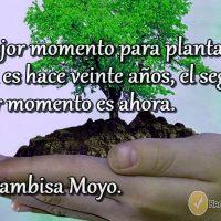 frases motivadoras para cuidar el medio ambiente 2